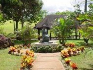 Ma_Manuhii-statue-coltonbh