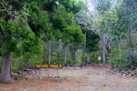 Manuka_State_Park-Forest_Reserve_Nature_trail