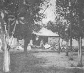 Mauna_Loke_(Rose_Mont)_in_ca._1880