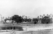 Mokuʻula,-Lahaina-Moku'ula-(WC)-ca._1893
