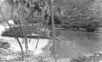 Napoopoo Pond-Lualiiloa Pond-1890s-DLNR