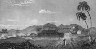 Native_Chapel-Cottage_of_Ellis_and_Palace_of_Kalanimoku-(Stewart)-1828