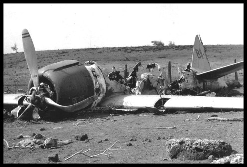 Ni'ihau Incident - Crashed Japanese Plane