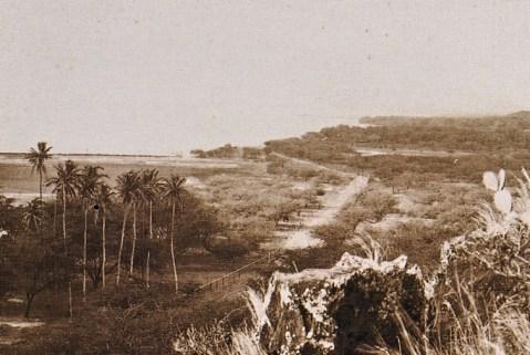 Niu_Valley-Kalanianaole_Highway-(maunalua-net)-1900s