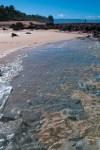 North Shore Petroglyphs-scottsharick
