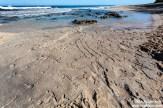 North Shore Petroglyphs-((c)MikeKrzywonski)