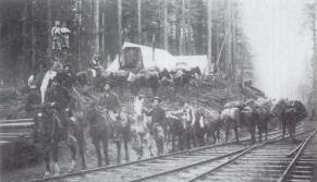 Northern Pacific Railroad survey crew, ca. 1890-93