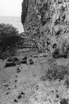 Nualolo_Kai-Bishop Museum Excavations within K-3, Site 196-(Carpenter)-1958