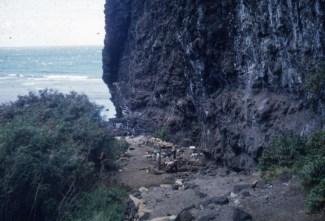 Nualolo_Kai-Bishop_Museum-archaeological_investigation-1958-k3-i-013_ppt