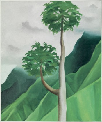 O'keeffe_-_'Papaya Tree, Iao Valley',_1939