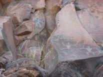 Olowalu-Petroglyphs