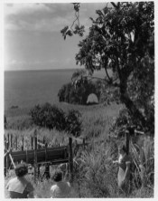 Onomea-Arch-with-flume-in-foreground-PP-30-5-030-1935