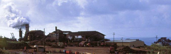 Ookala Sugar Mill-Malecek