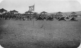 PalmCircle_USAMH34_l-1913
