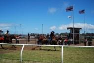 Parker Ranch-Races