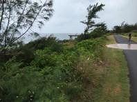 Pineapple Dump Pier