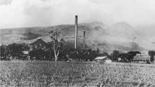 Pioneer Mill