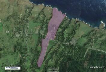 Puehuehu-North_Kohala-Kynnersley_Road-GoogleEarth