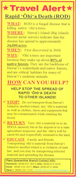 Rapid Ohia Death-Dept-Ag-Brochure-2