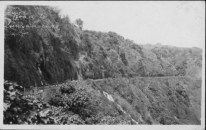 Road to Laupahoehoe-PP-30-2-007