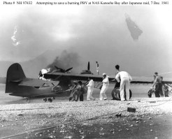 Saving Catalina seaplane