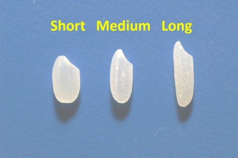 Short-Medium-Long Grain Rice