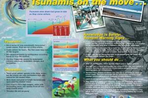 Tsunami in Hawai'i