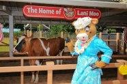 Two Lani Moo