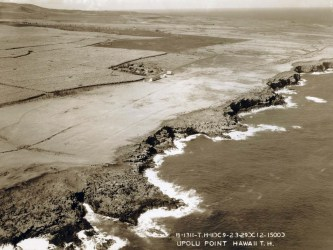 Upolu Point Field, Hawaii, February 3, 1929
