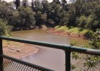 Karsten_Thot_Bridge