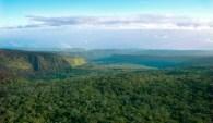 TNC OGG, East Maui, Waikamoi, Aerial