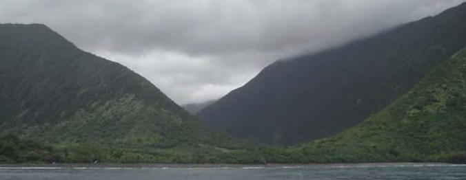 Wailau (Windy K McElroy)
