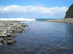 Wailau (Windy K McElroy)