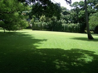 Walker_Estate-Lawn