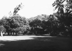 Walker_Estate-garden-(NPS)