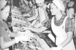 Women at Dole Pineapple Cannery