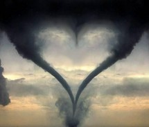 hearts,love,nature,photography