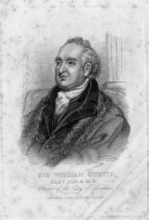 Sir William Curtis