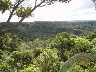 vista-of-the-Alakai-including-the-Hono-o-Na-Pali-NAR