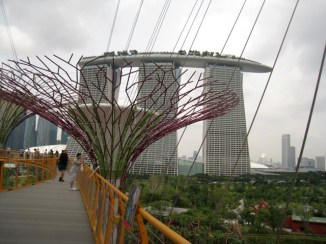 treetop walk at Singapore's Garden by the Bay, looking out to the city and famous Marina Bay Sands Tower