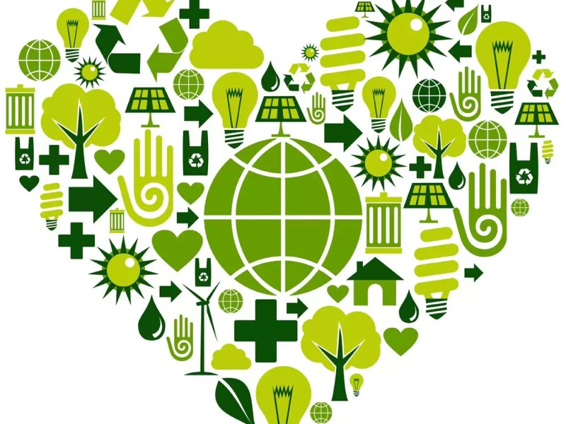 10 Steps To A Greener Office