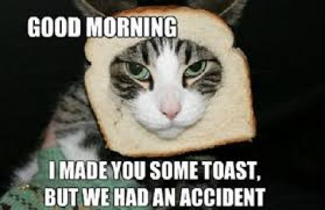 Funny Good Morning Memes and Wallpapers