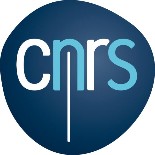 logo CNRS images stéréoscopiques