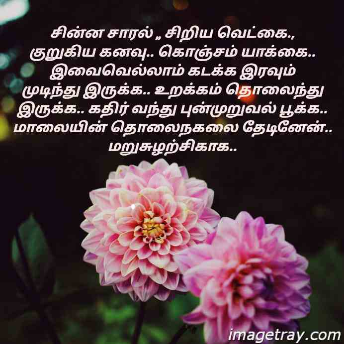 amazing tamil WhatsApp dp