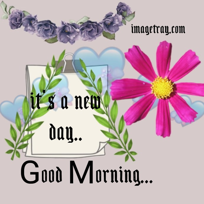 good morning, its a new day