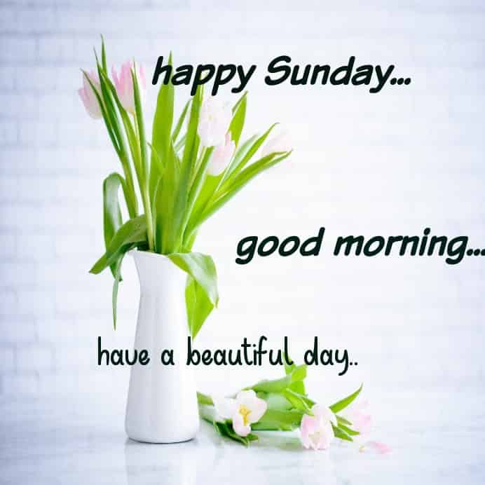 an amazing Sunday with good morning