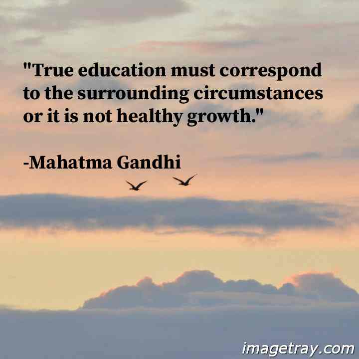 quotes for education