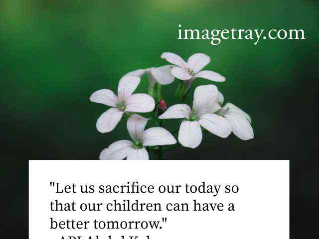 abdul kalam quotes on life