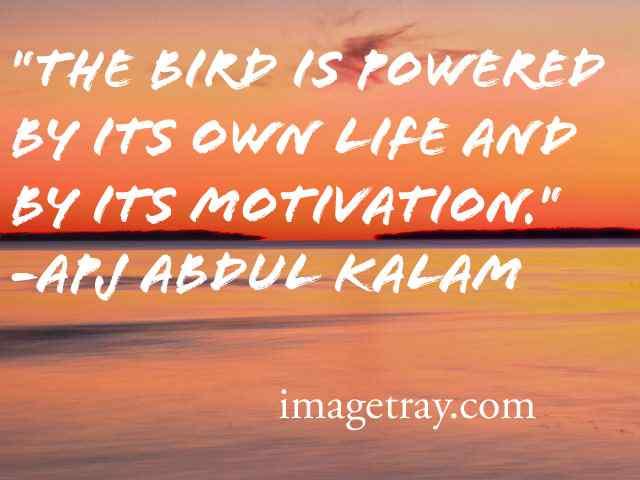 amazing quotes from abdul kalam