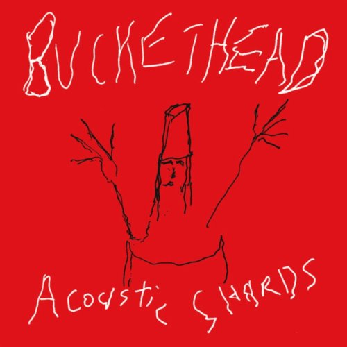 Buckethead - Acoustic Shards (2007) [FLAC] Download